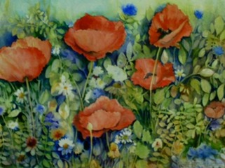 Field Poppies 14 X 20