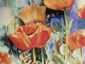 "Poppies 24"" X 30"" or 16"" X 20"""